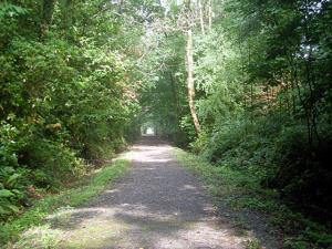 Ystwyth Trail (Stage 2)