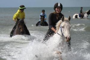 Wales Trekking and Riding Association
