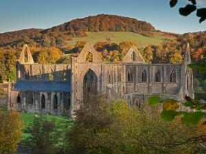 Tintern Abbey