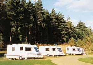 The Sandringham Estate Caravan Club Site