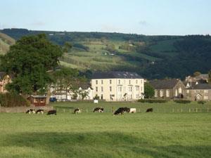 Meadowsweet Hotel