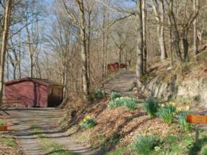Porthouse Wood Cabins