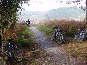 Llwyn-yr-Helm Touring & Camping Park