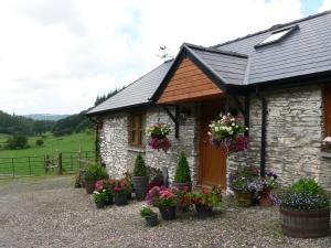 Red Kite Cottage - Aberystwyth