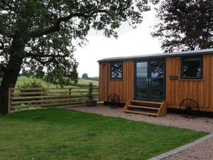 Little Acorn - Luxury Shepherds Hut