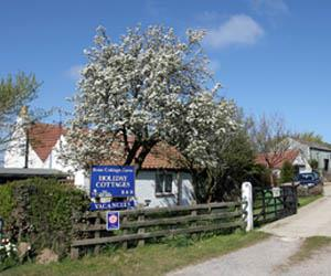 Briar Cottage & Bramble Cottage